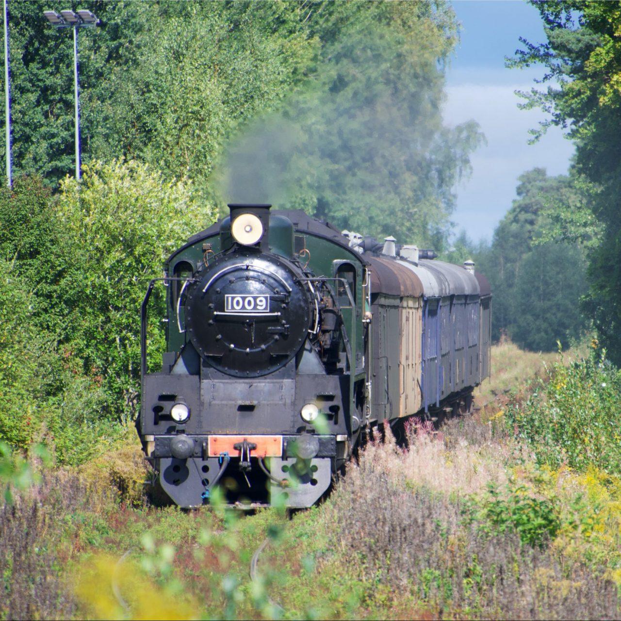 Höyryjuna kesäisissä maisemissa